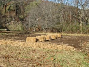 Two-Field Farm